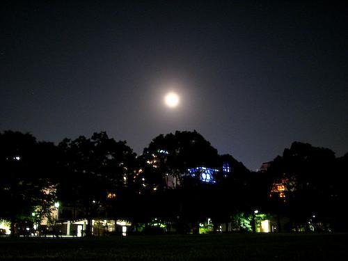天神中央公園にてお月見