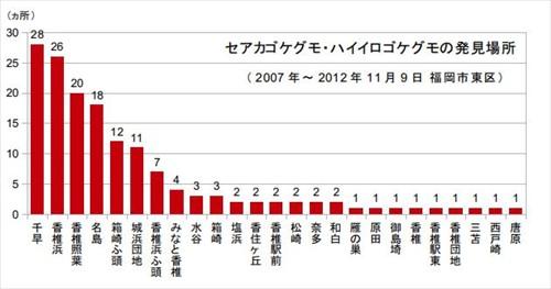 福岡市東区内のセアカゴケグモ・ハイイロゴケグモ発見場所数