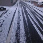 福岡市内も雪が積もりました