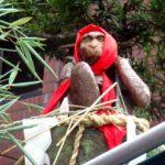 おみちびきの神さん 猿田彦神社へ
