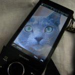 最近のスマートフォンのサイズを比較