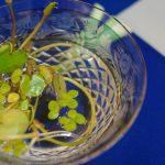 花の輪・人の輪-みんなの花展 水無月の詩
