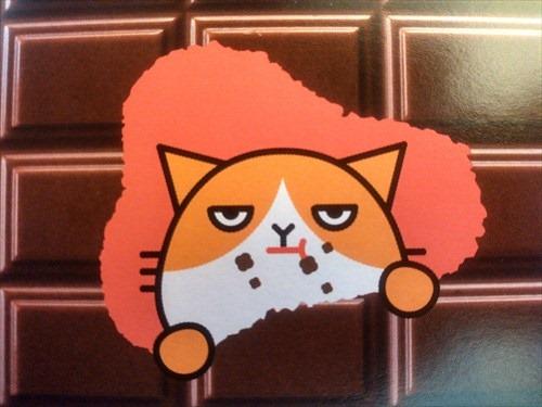 ネコにチョコは毒です