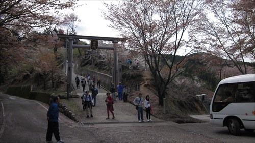 「修行門」を登ると奥千本エリア