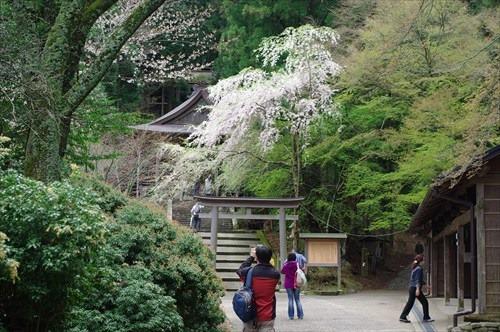 世界遺産の金峯神社(きんぷじんじゃ)
