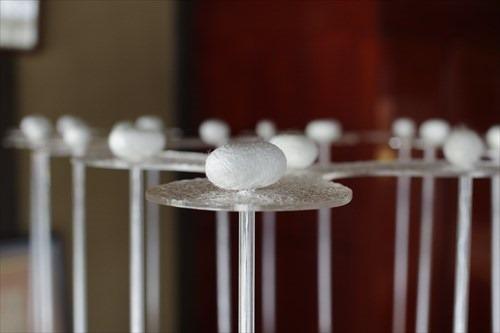 インスタレーション 「繭から織へ 糸のテーブル」(制作:前田智洋 氏)